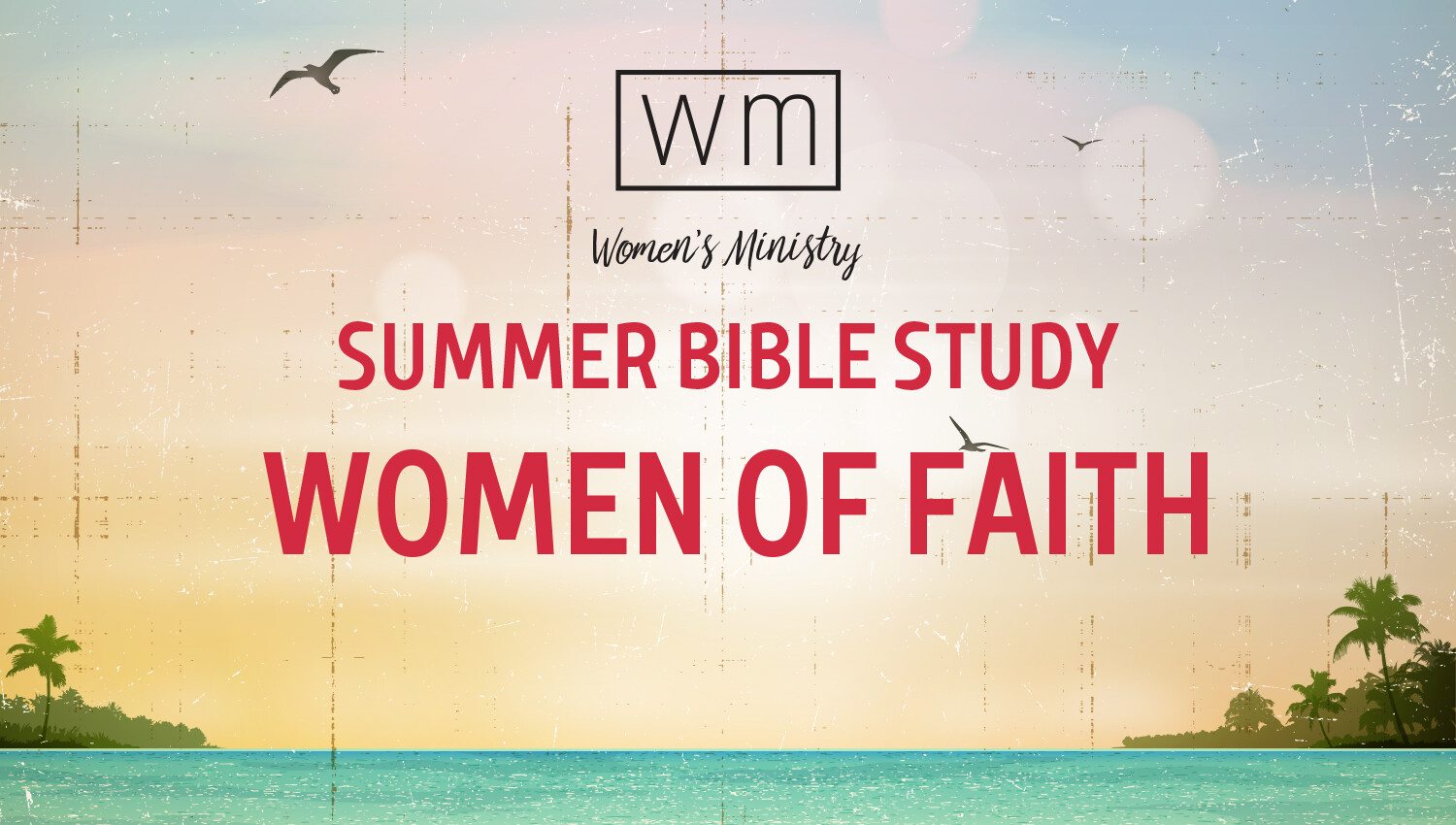 Women's Summer Bible Study